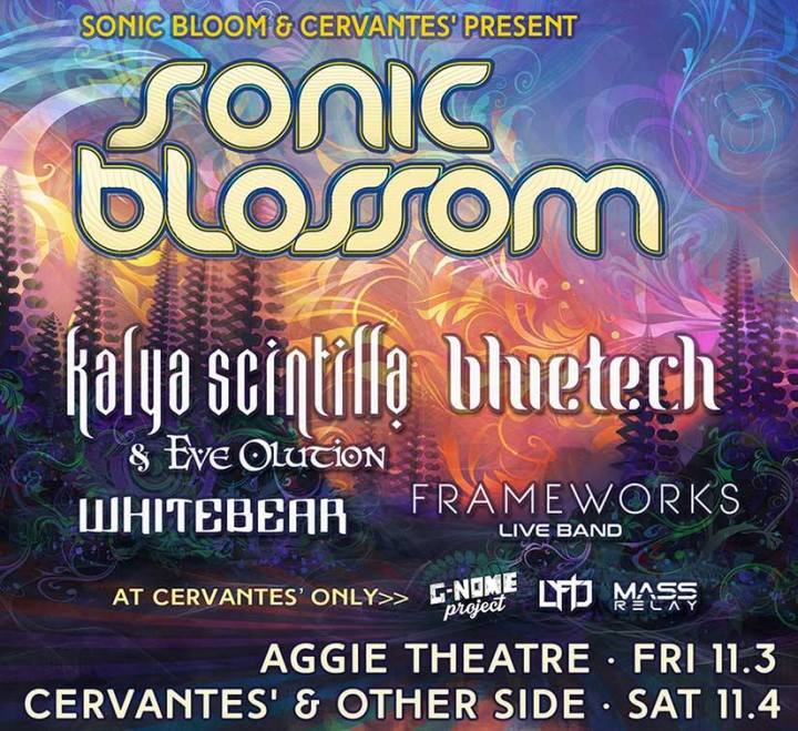 EVENT SPOTLIGHT & COMMUNITY STORY: Sonic Blossom ft. Kalya Scintilla & Eve Olution, Bluetech, Whitebear, Frameworks & MORE!